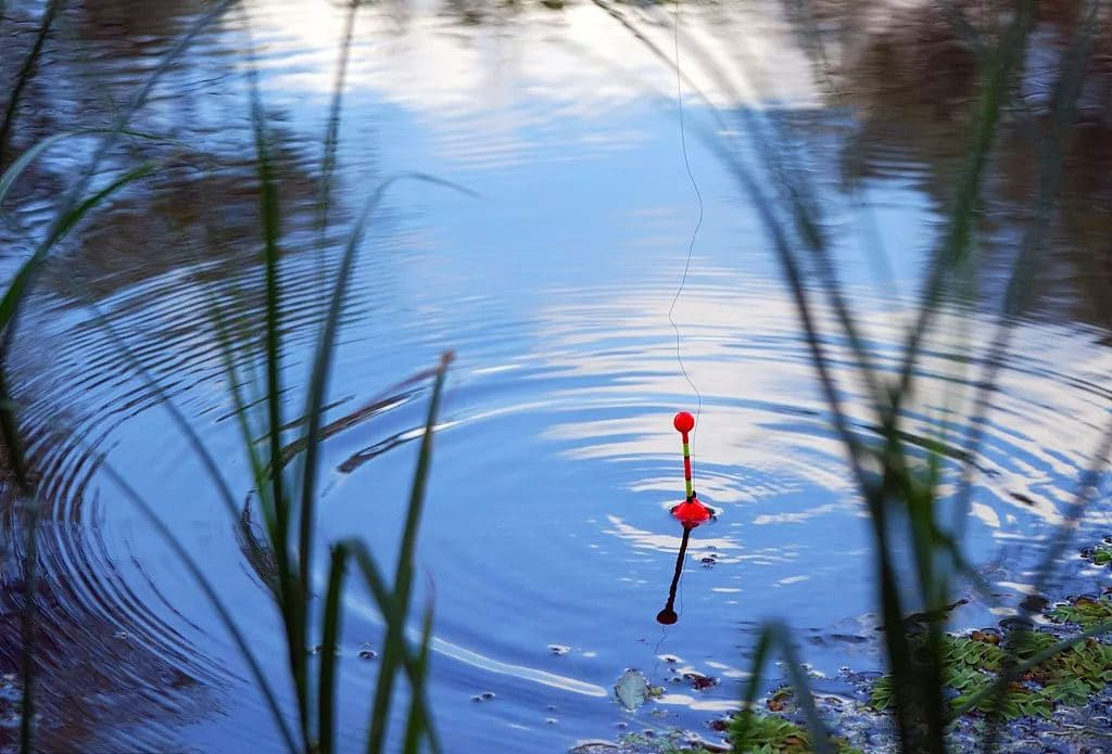 Fishing floats types how to set them up badangling for Fishing floats types