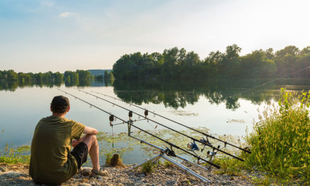 Five Great Carp Rigs
