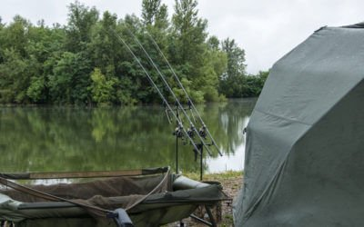 Everything You Need to Know When Selecting a Carp Venue