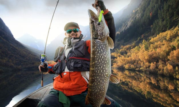 Fishing for Pike: Why Use Lures?