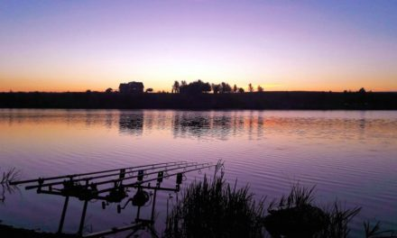 Liven up Your Winter Fishing by Using Maggots
