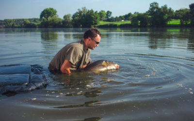 What Does It Mean to Be Good at Carp Fishing?