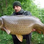 Hunting Big Carp