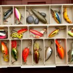Perch Lures: A Guide to Lure Fishing Rigs for Big Perch