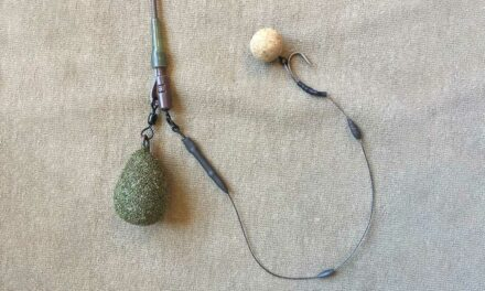 How to Tie a Slip D Rig – Ideal for Wafters & Balanced Baits