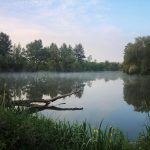 Five Top Tips for Fishing Day-Ticket Waters